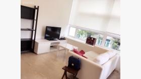 一室一卫公寓近新加坡詹姆斯库克大学随时入住