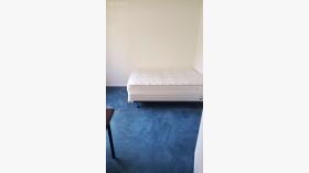 达拉斯别墅中的独立卧室出租