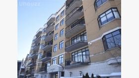 豪华两室公寓