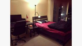 公寓单间近新南威尔士大学2月13日起入住