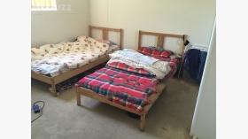 公寓主卧近新南威尔士大学Kensington校区随时入住