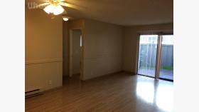 圣荷西州立大学附近2B2B公寓